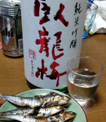 Sake13