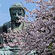 鎌倉大仏3