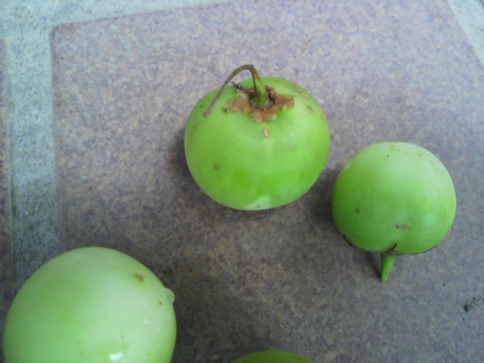 ジャガイモの果実