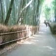嵐山竹林3.